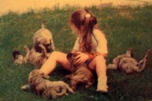 perro de presa2