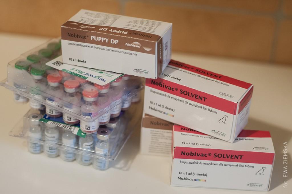 szczepionki1