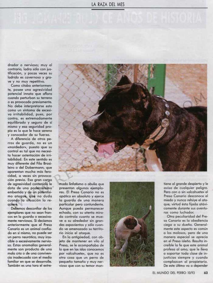 ARTÍCULO PUBLICADO EN LA REVISTA EL MUNDO DEL PERRO EN OCTUBRE DE1993 2