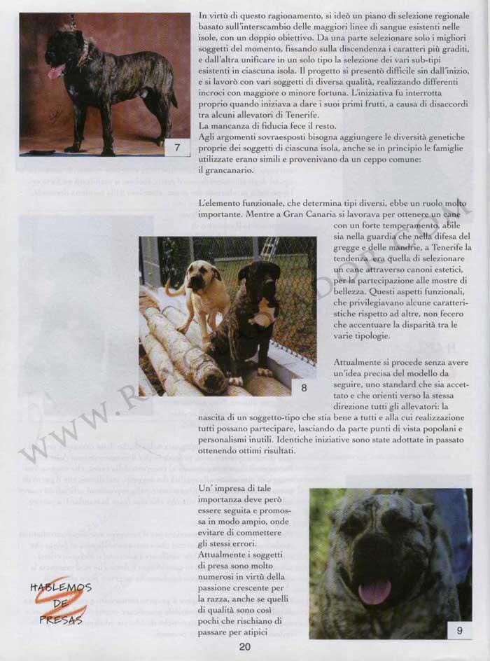 ARTÍCULO PUBLICADO EN LA REVISTA ITALIANA CANI DA PRESA EN ABRIL DE 1996 3