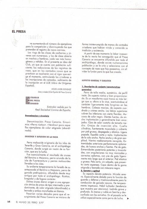 Articulos de 1997 la raza del mes de agosto-10