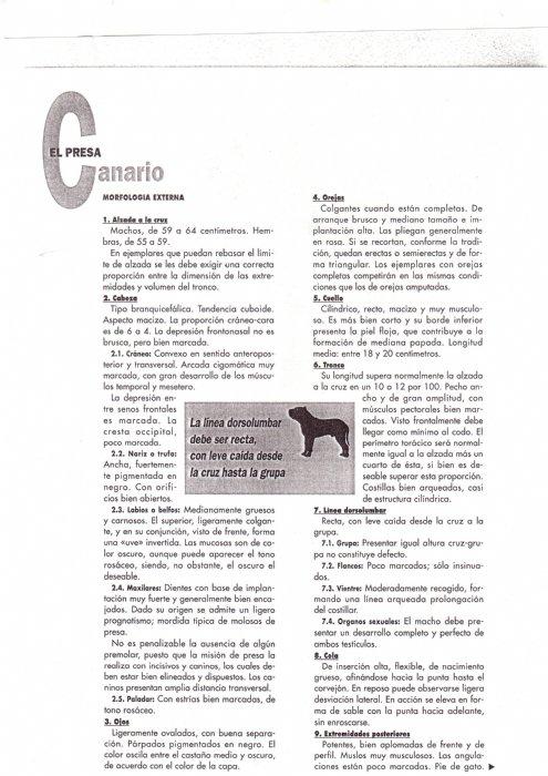 Articulos de 1997 la raza del mes de agosto-12