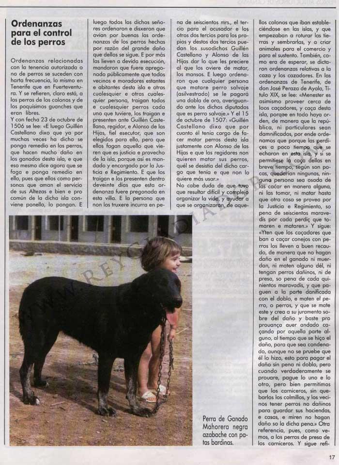 Los Perros en la Historia de Canarias 6