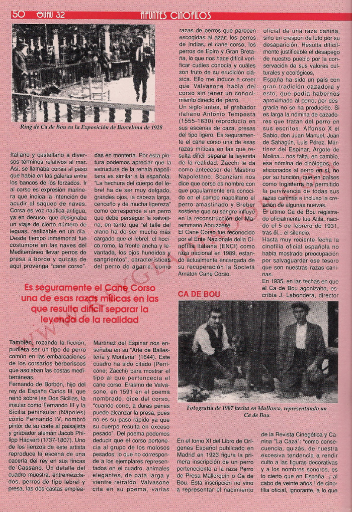 articulo ano 1990 revista guau (2)