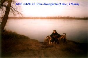KING_SIZE_de_Presa_Awangarda_9msc._i_Morus