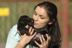 What age can we take our Presa Canario puppy home