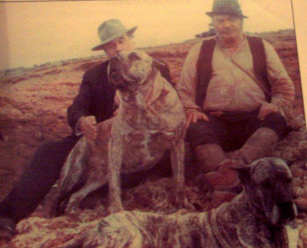 "Presa Canario in movie ""Oceano"" year 1989"