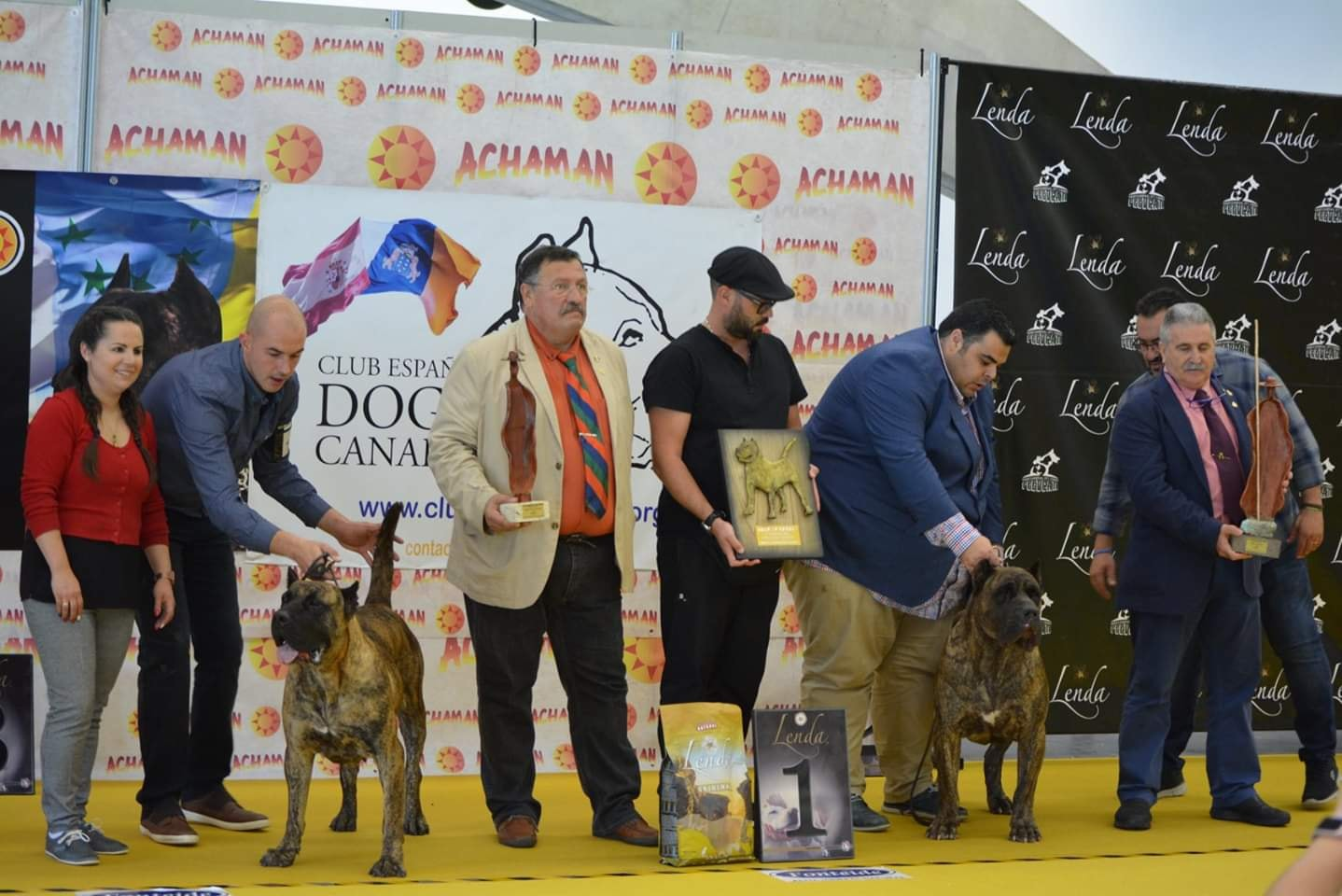 27 Monografica of Dogo – Presa Canario, Tenerife, Canary Islands 2018