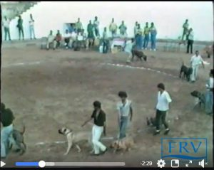 rare video of PResa Canario in 1986, Gran Canaria