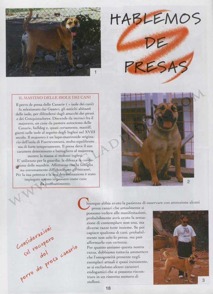 ARTÍCULO PUBLICADO EN LA REVISTA ITALIANA CANI DA PRESA EN ABRIL DE 1996 1