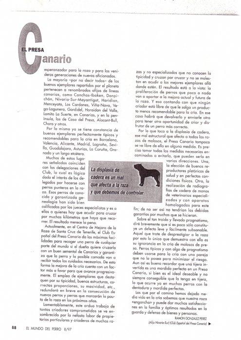 Articulos de 1997 la raza del mes de agosto-29