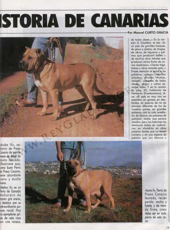 Los Perros en la Historia de Canarias 2