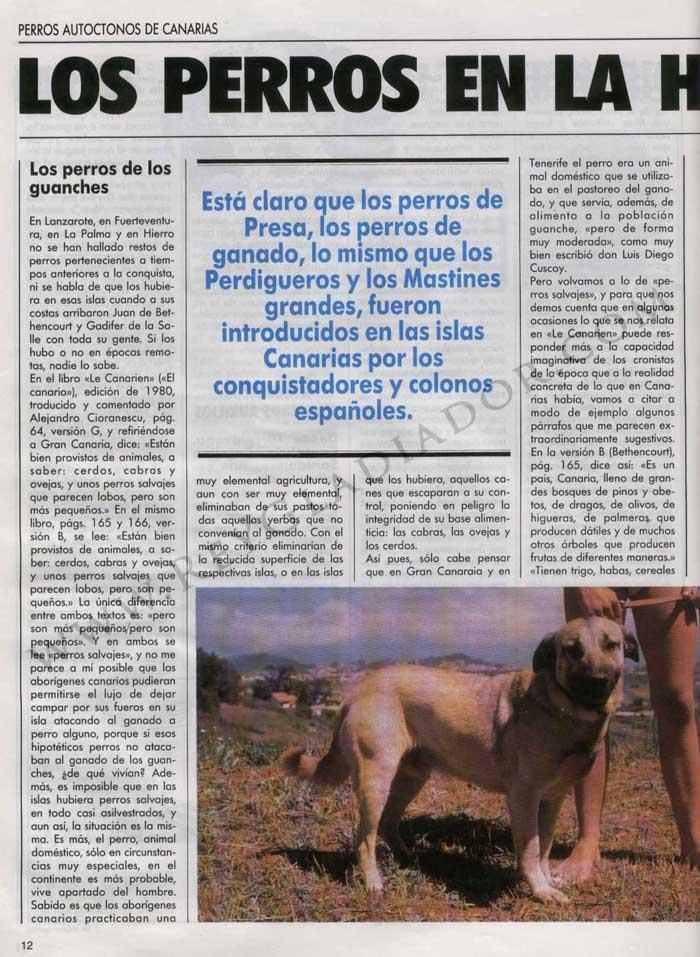 Los Perros en la Historia de Canarias