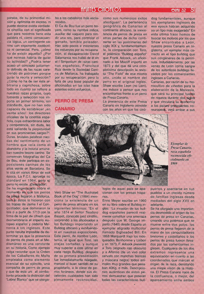articulo ano 1990 revista guau (3)
