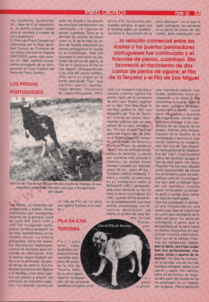 articulo ano 1990 revista guau (5)